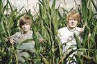 Spaß im Maisfeld