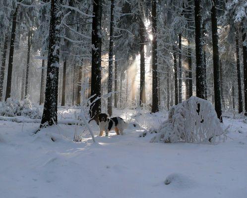 .. Spaß im Schnee