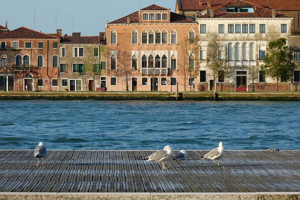 ...Spaziergang am Giudecca Canal...