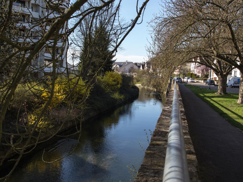 Spaziergang am Saalbach 18