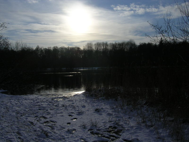Spaziergang am Woldsee