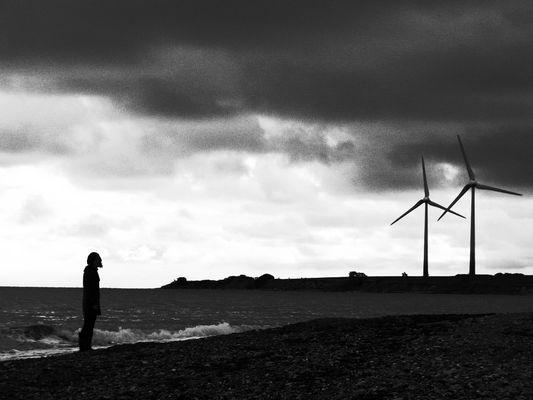 Spaziergang an der Ostsee-Küste II