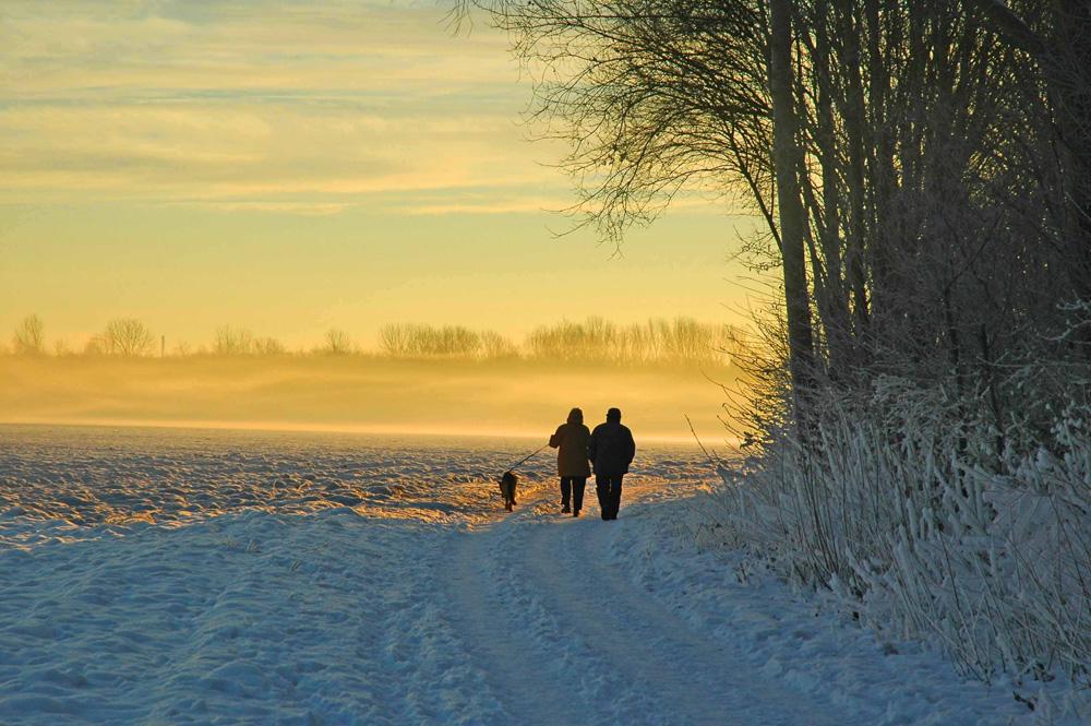 Spaziergang an einem kalten Wintermorgen