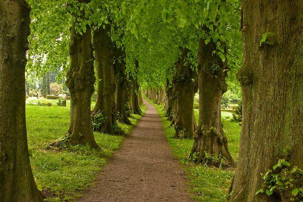 Spaziergang durch Sieseby, ein ganz besonderer Ort an der Schlei - die 3.)