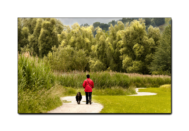 Spaziergang im Grünen.