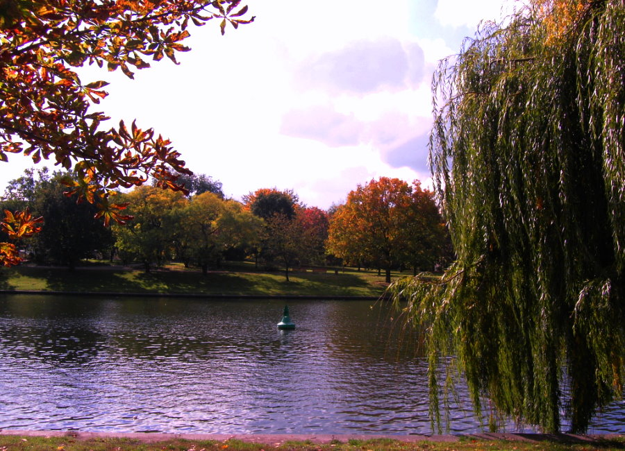 Spaziergang im Herbst 1