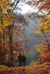 Spaziergang im Herbst