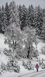 Spaziergang im Schnee!