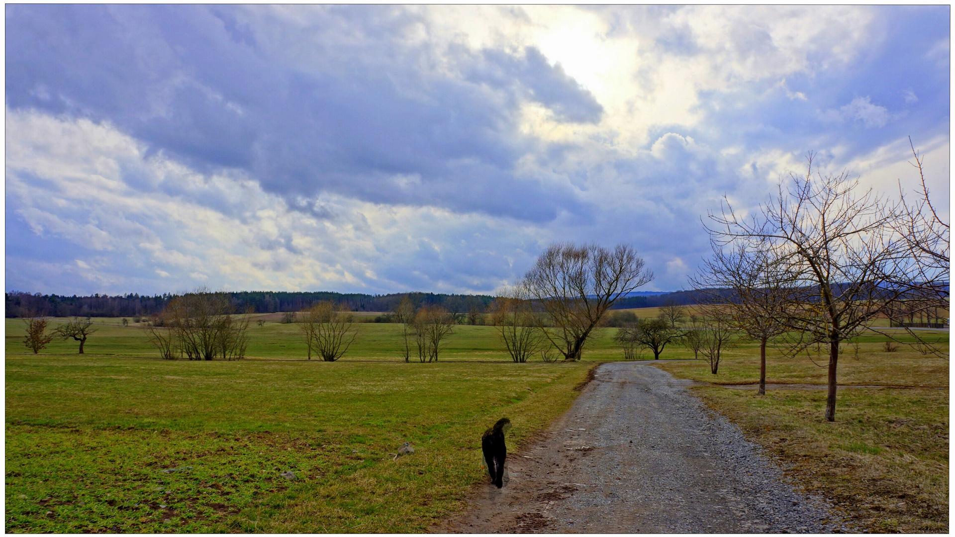 Spaziergang mit Wicky-Emily (paseando con Wicky-Emily)