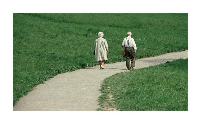 Spaziergang zurück