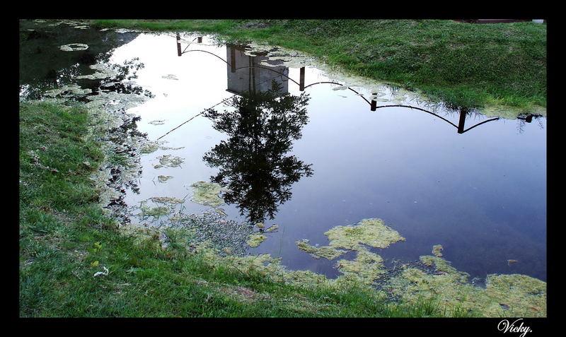 Specchio della natura.