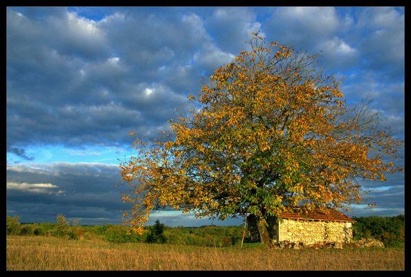 Spectacle d'automne