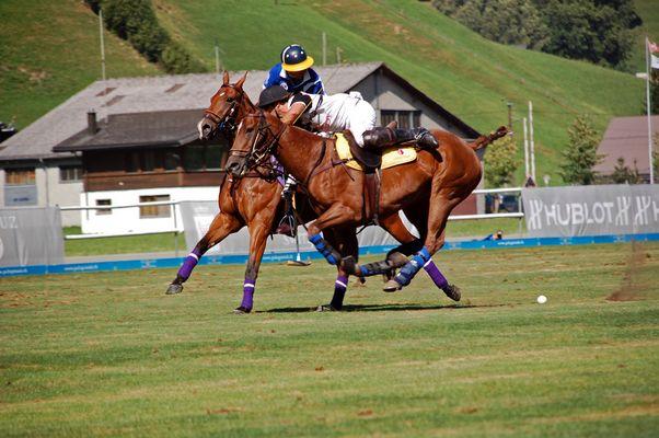 speed und Pferdemuskeln
