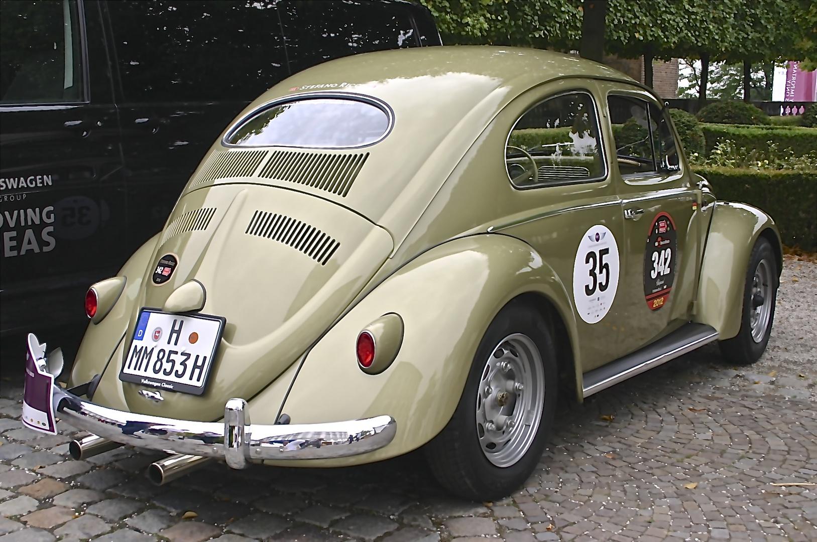 Speedy Beetle 01