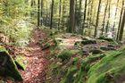 Spessart - der Weg zur Karlshöhe