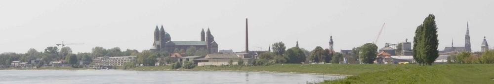 Speyer vom Rhein aus