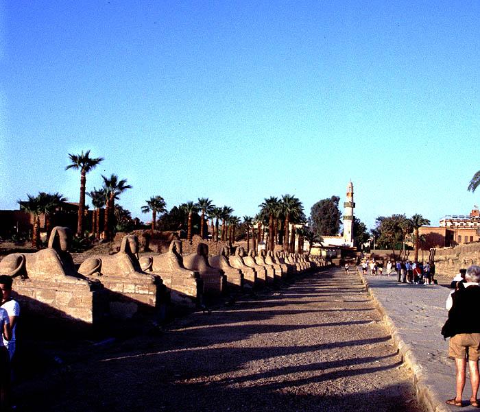 Sphingenallee von Luxor
