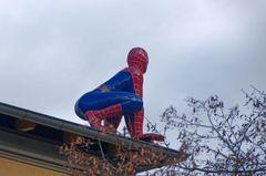 Spiderman hält Ausschau