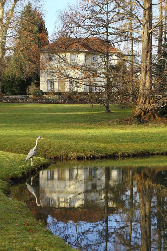 Spiegel Im Garten spiegel im hohenheimer park foto bild landschaft garten