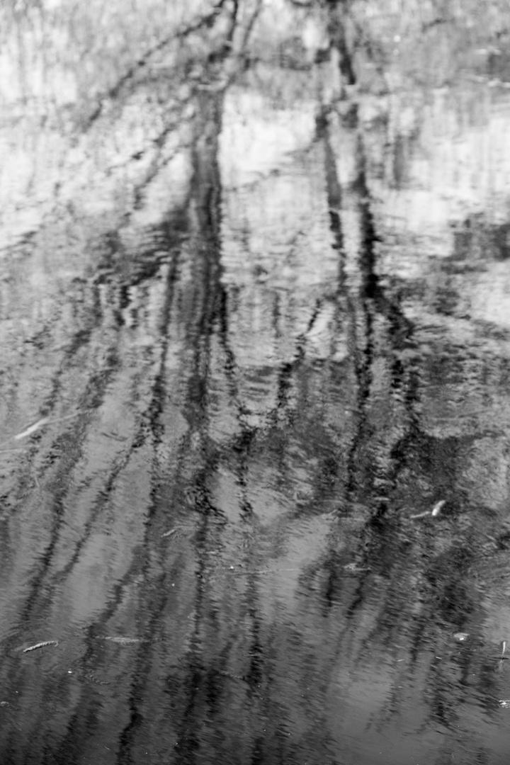 Spiegel im Wasser