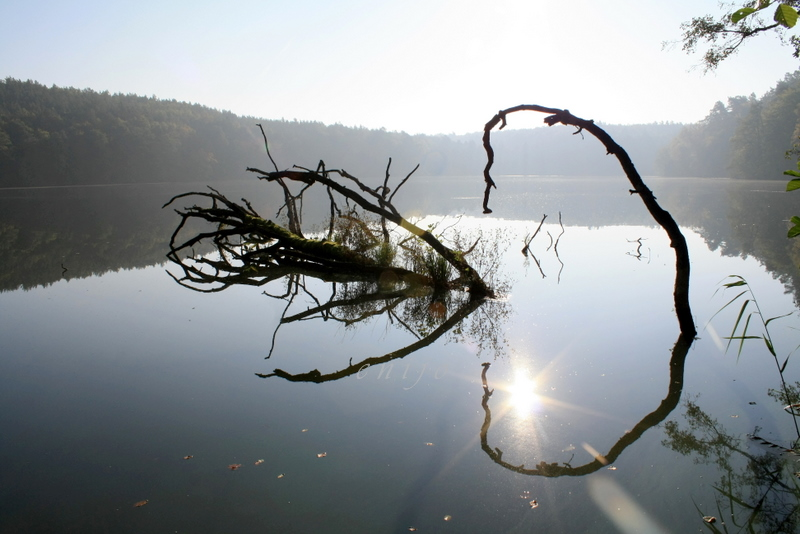 Spiegel See