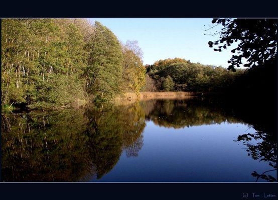 Spiegelbild des Herbstes