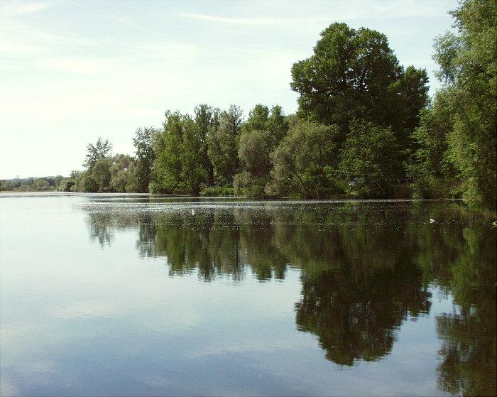"""Spiegelbild des """"Hörhäuser"""" - Baggersees ..."""