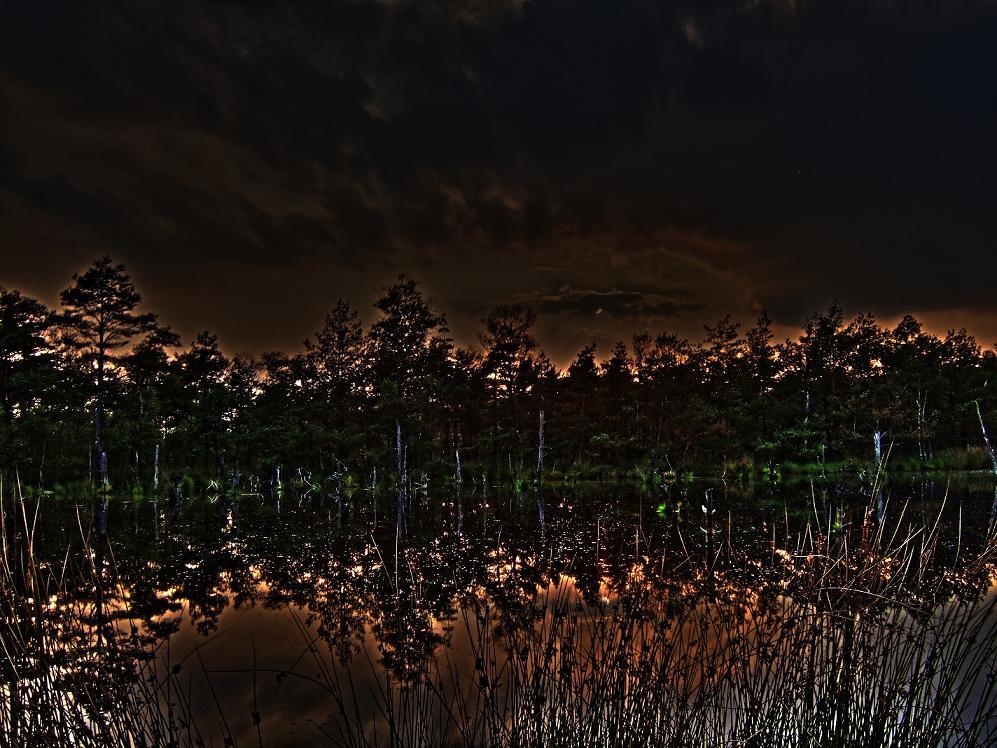 Spiegelmoor