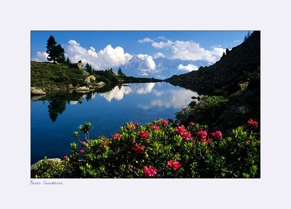 Spiegelsee zur Zeit der Almrauschblüte