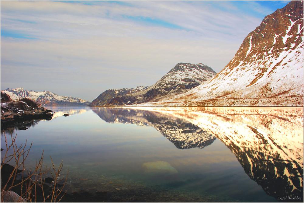 Spiegelung am Fjord (3)