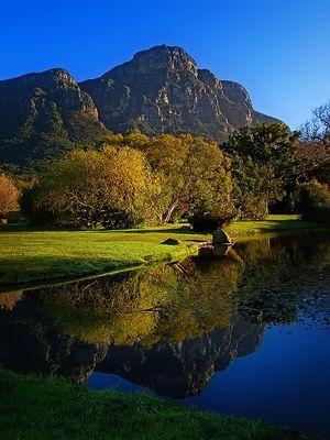 Spiegelung im Botanischen Garten von Stellenbosh / Südafrika