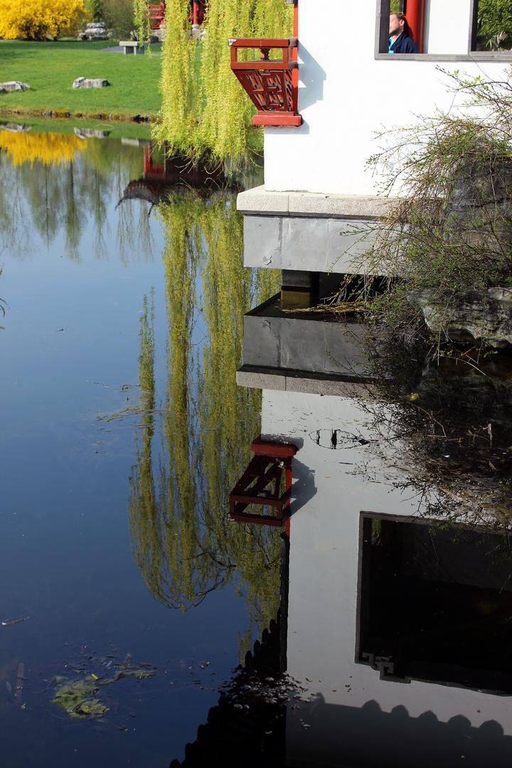 Spiegelung im Chinesischen Garten