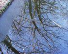 Spiegelung im halb eingefrorenen See