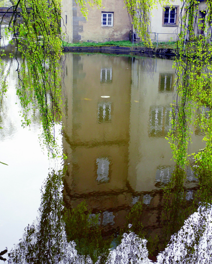 Spiegelung im Schloßgraben der Ulenburg