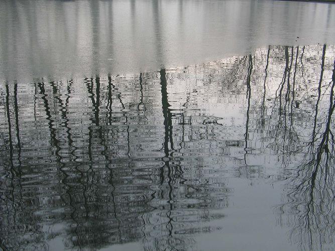 Spiegelung im Wasser und Eis