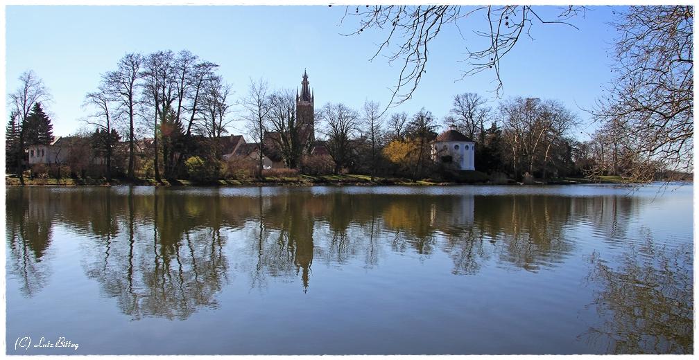 Spiegelung im Wörlitzer See