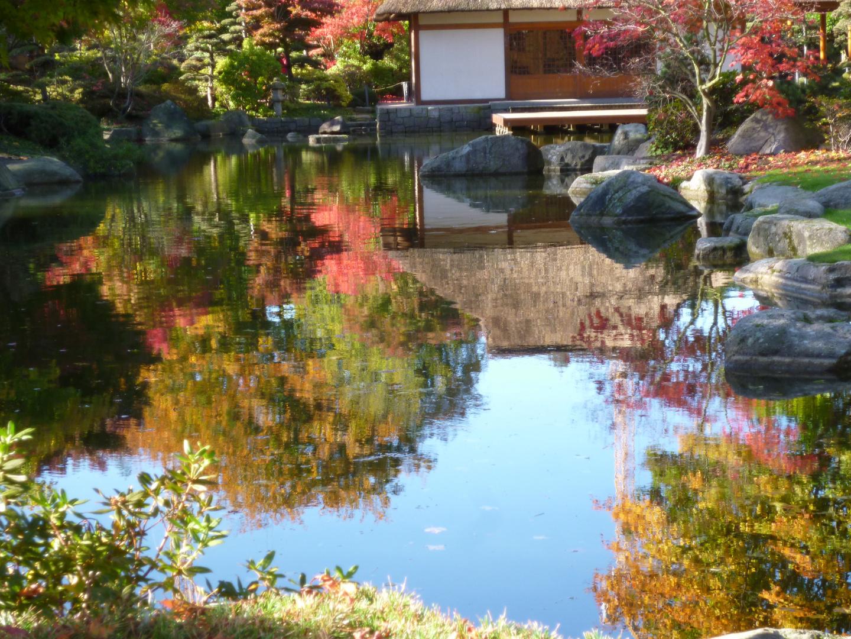 Spiegelung vor dem Japanischem Teehaus in Planten un Blomen von Hamburg