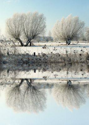Spiegelung Wintermotiv