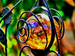 Spiegelungen im Garten