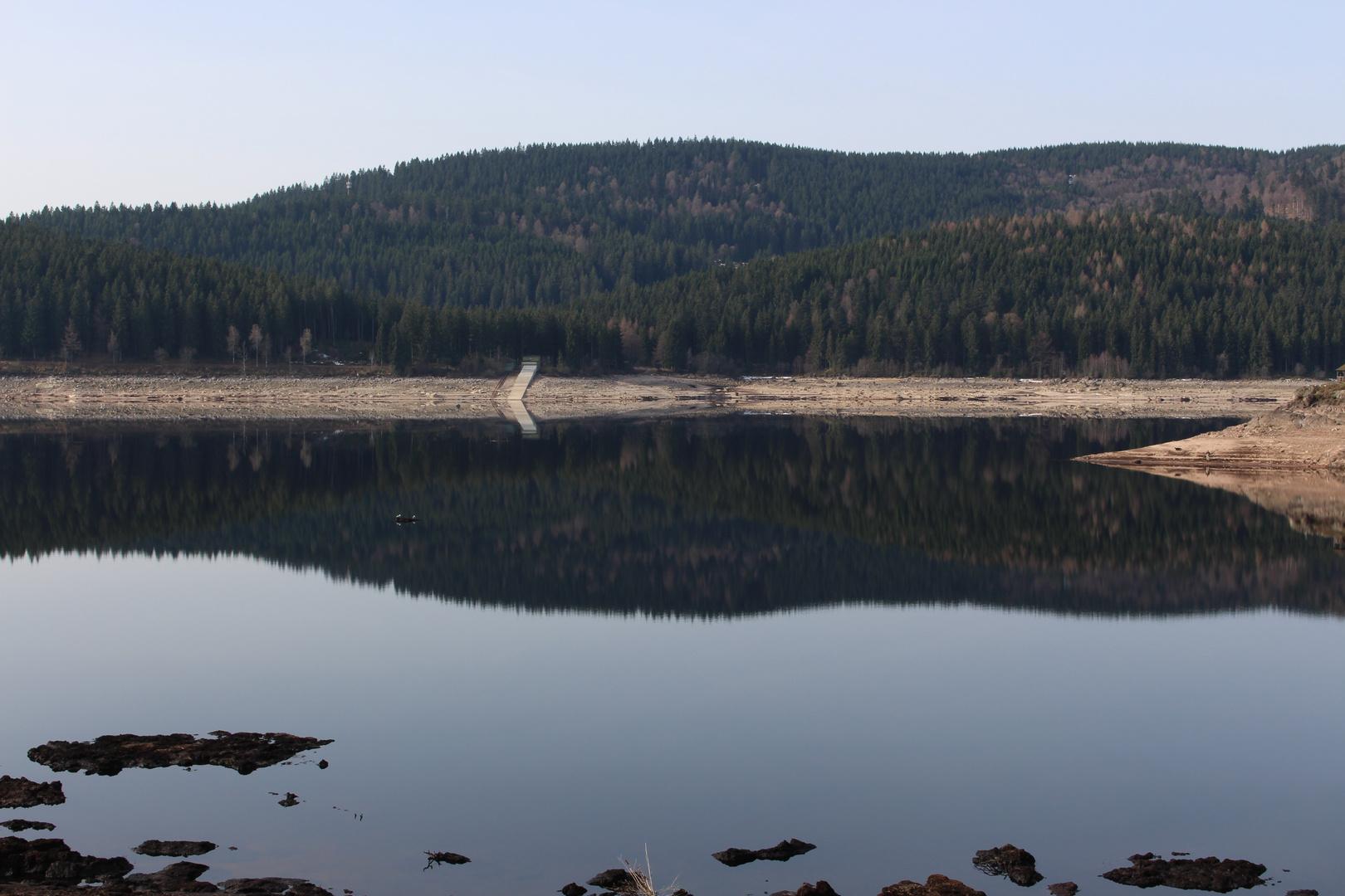 Spiegelungen im Schluchsee (Schwarzwald (D)) mit wenig Wasser