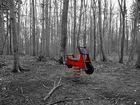 Spiel im Wald
