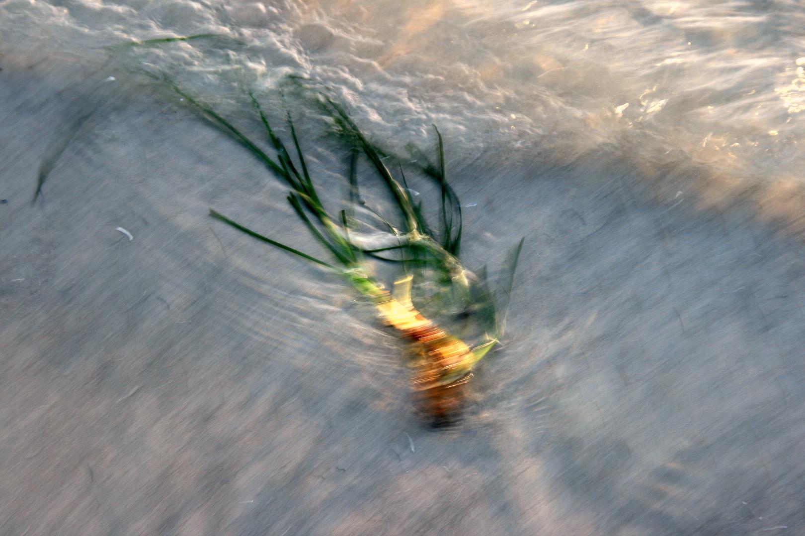 Spiel mit den Wellen..