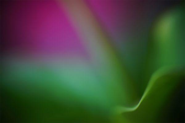 Spiel mit Farben und Kurven