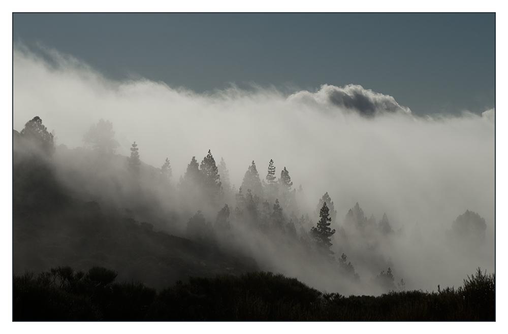 Spiel mit Licht und Wolken . . . . (1)
