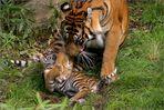 Spiel mit Mama