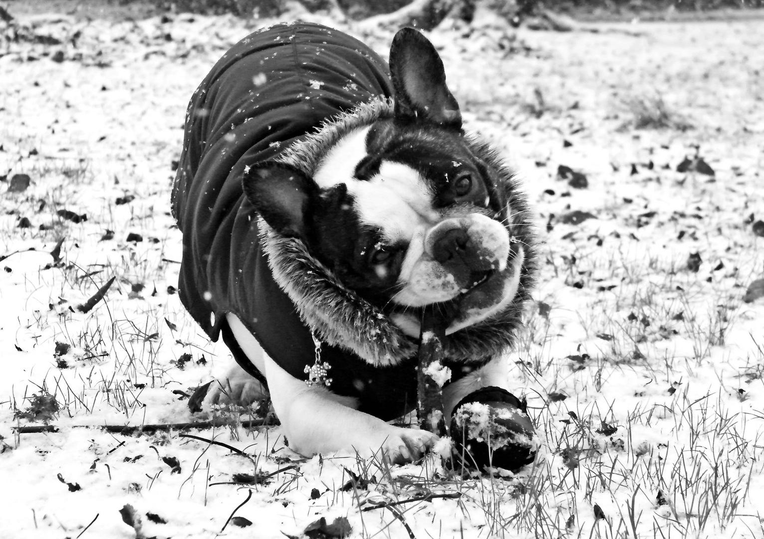 Spielen im Winter Wunderland