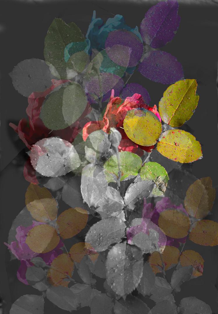 Spielerei mit Herbstfarben