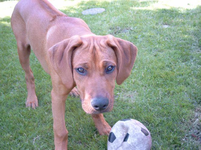 Spielst du mit mir?