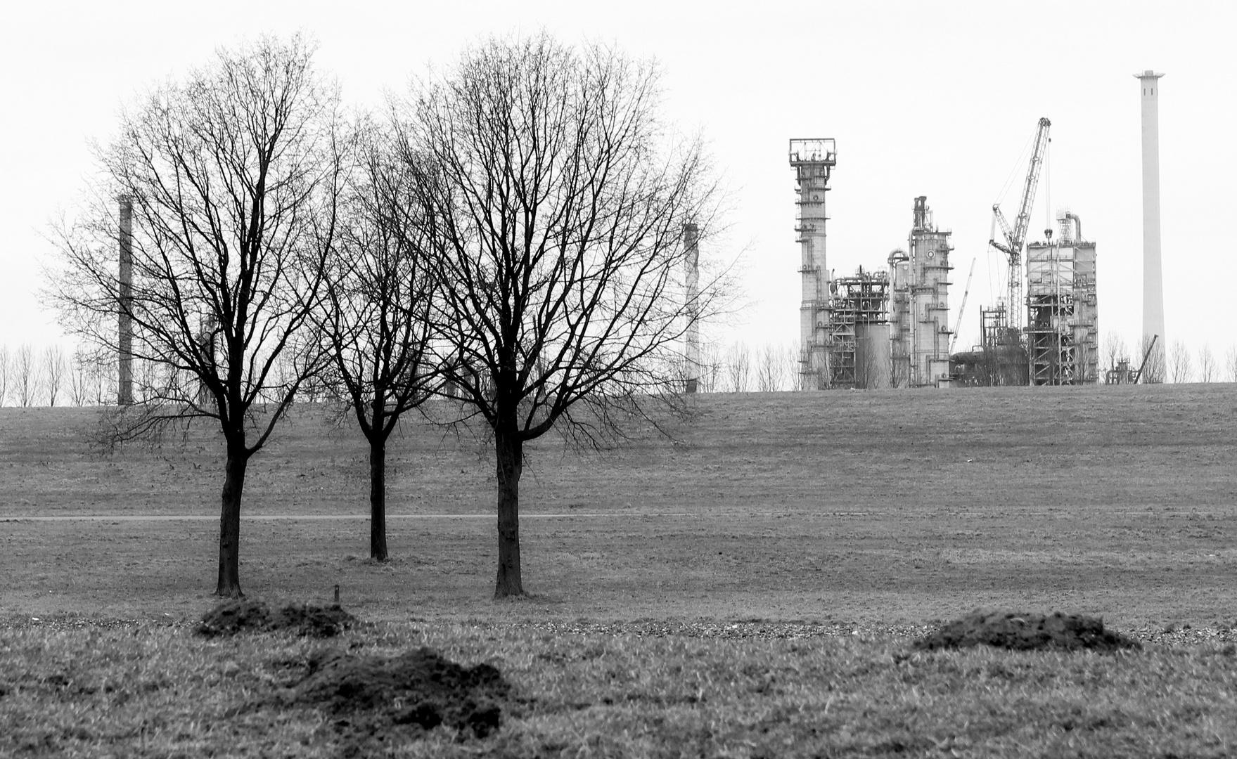 Spijkenisse Raffinerie