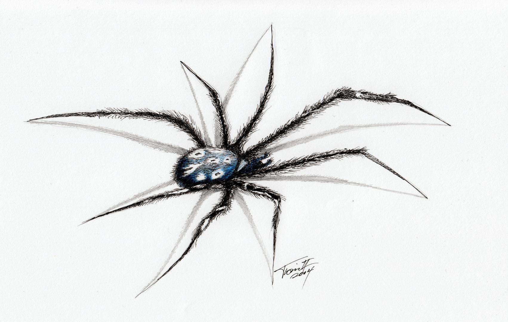Spinnen gehören...